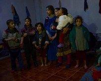 Telaferden göç eden Türkmenler Türkiye sınırına ulaştı