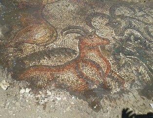 Mozaiğin sırrı açıklandı
