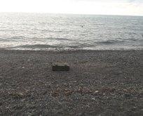 İçi mühimmat dolu sandık kıyıya vurdu