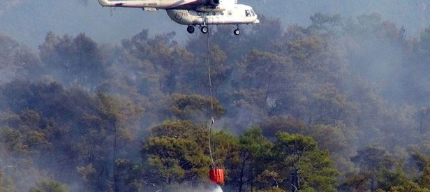 Milasta orman yangını