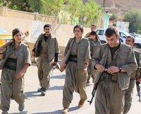 PKKlı teröristler DEAŞ bahanesiyle Kerkükte!