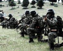 Terör örgütü PKKya ağır darbe
