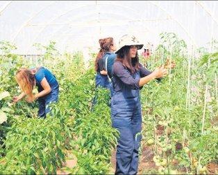 Kırsalda işsiz genç kalmayacak