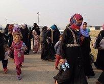 Musul'da Sünnilere yer yok!
