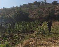 Diyarbakırda PKKnın finans kaynağına ağır darbe