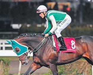 Halis muhlis şampiyon