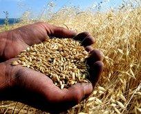 Tarıma 100 milyarlık destek