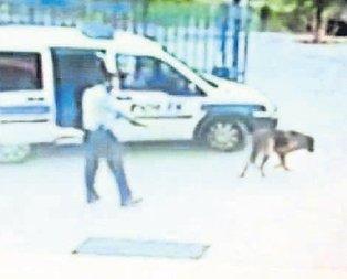Köpeği öldüren komiser FETÖcü çıktı