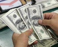 Dolar 1.5 ayın dibini gördü