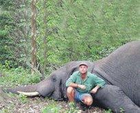Safaride fil ezdi