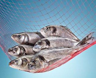 Türk balığı 37 ülkeye uçarak girdi