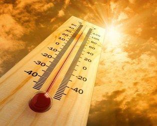 Tarihin en sıcak yılı