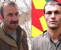 Gri listedeki 2 terörist öldürüldü