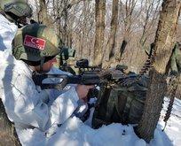 PKKya ağır darbe! Operasyonlar aralıksız sürüyor
