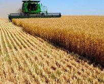 Milli tarım için Ar-Ge işbirliği