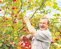 Çiftçilerin kredi borcu erteleniyor