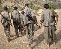 Van'da eylem hazırlığındaki 4 terörist...