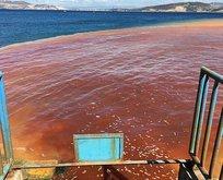 İzmirde denizi ne hale getirdiler?