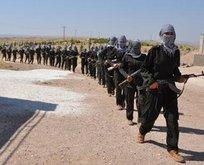 Askeri güç kullanmadan PKK çekilmez