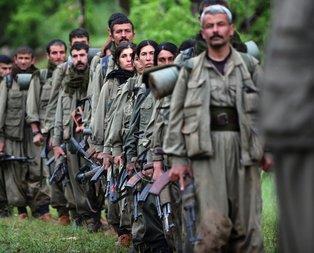 PKK kışa geçemiyor!