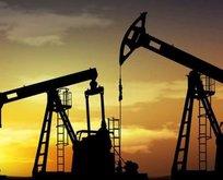 Akdenizde petrol ve doğalgaz için düğmeye basıldı