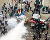 AB Konseyine süt tozuyla protesto