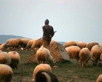Çoban için 5 bin lira