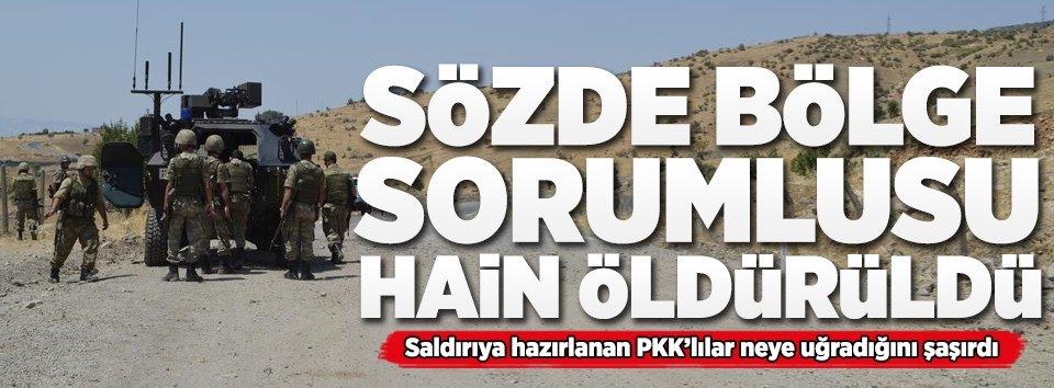 Terör örgütü PKKya bir darbe daha