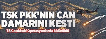 PKK'nın sözde üst düzey yöneticisi öldürüldü