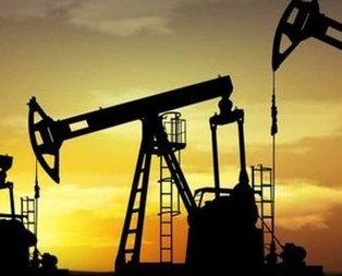 Petrol aramaya KKTC desteği
