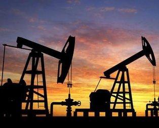 Petrol fiyatı 7 ayın dibinde