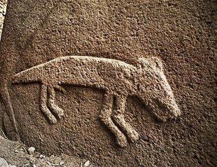 Yeryüzünde ilk oyulmuş kafatasları