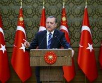 Stratfor: Erdoğanın çağrısı küresel sistemi değiştiriyor