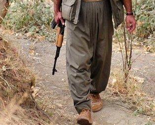 Diyarbakırda öldürülen terörist bakın kim çıktı