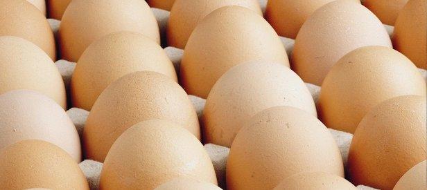 Yumurta krizi takibe alındı