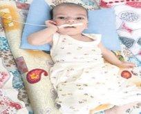 Barış bebeğin yaşam savaşı
