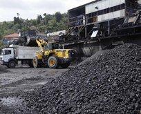 50 yıl yetecek kömür rezervi bulundu