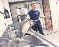 55 kiloluk balık oltaya takıldı