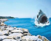 Jaws modası