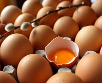 Zehirli yumurta krizi İtalyaya sıçradı