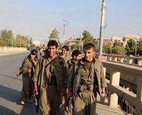 Çavuşoğlundan PKKlı teröristlerle ilgili açıklama