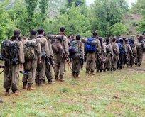 PKK tükeniyor