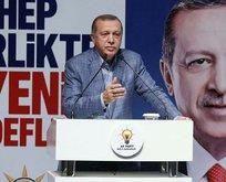 Erdoğan: Almanya teröristlere yataklık ediyor