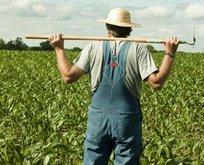 Tarım işçilerine yüzde 12,5 zam
