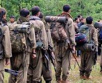 Tüm güvenlik birimlerinde PKK alarmı!