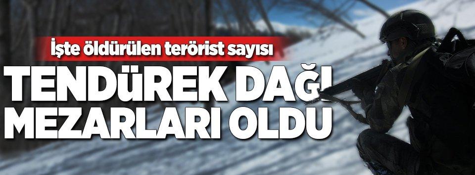 Tendürek Dağında PKKya çok ağır darbe!