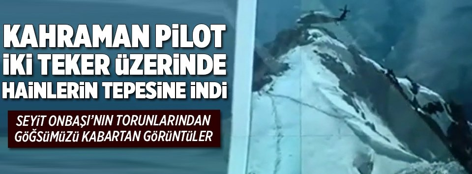 Kahraman Pilot hainlerin tepesine indi!