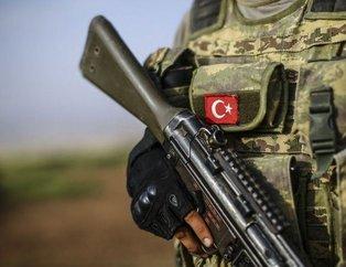 Türkiye, Irak ve İran'ın askeri güçleri