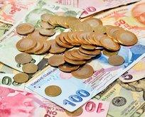 Türk Lirası yatırımcısına kazandırmaya devam edecek