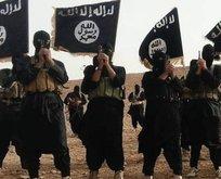 Üst düzey DEAŞ militanı öldürüldü